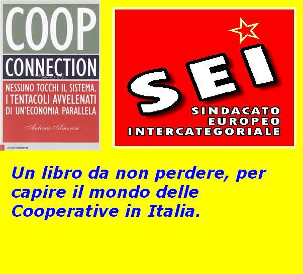 Libro su cooperative (SEI maggio 2016)